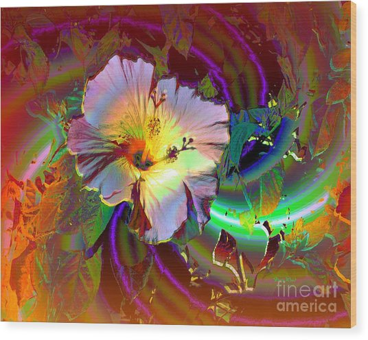 Tropical Hibiscus Explosion Wood Print by Doris Wood