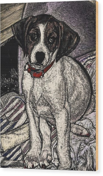 Trudy May The Puppy Wood Print by Robert Goudreau