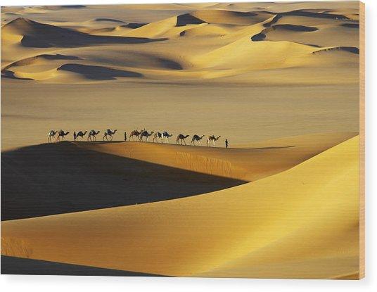 Tuareg Nomads With Camels In Sand Dunes Of Sahara Desert, Arakou Wood Print by Johnny Haglund