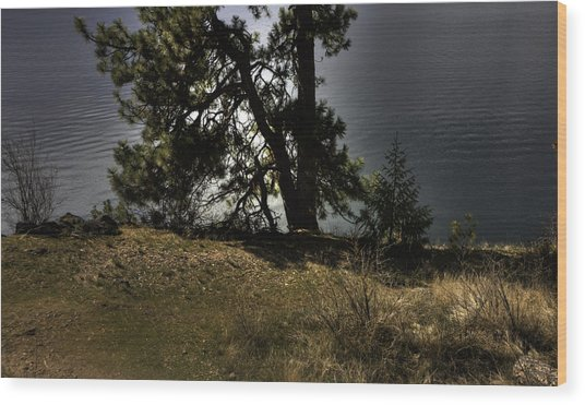 Tubbs Hill On Lake Cd'a Wood Print by Grover Woessner