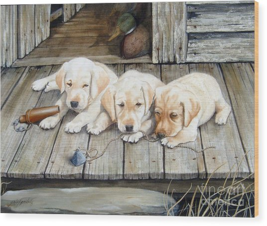 Tuckered Out Trio  Sold  Prints Available Wood Print