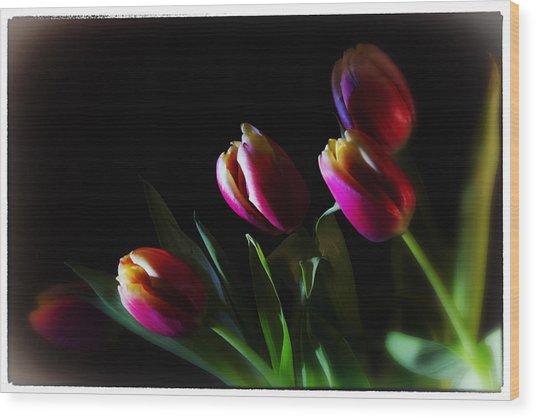 Tulip Dream Wood Print