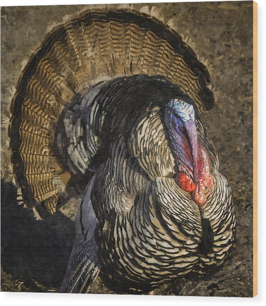 Turkey Day Strut Wood Print