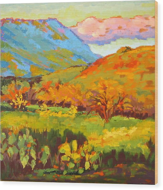 Turquoise Mountain Coral Hill Wood Print