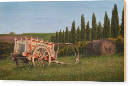 Tuscan Evening Wood Print by Daniel Sands