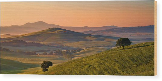 Tuscan Morning Wood Print by Daniel Sands