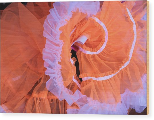 Tutu Swirls Wood Print by Denice Breaux