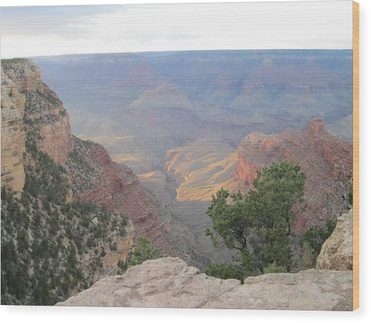 Twilight At Grand Canyon Wood Print by Pasha Sourbeer