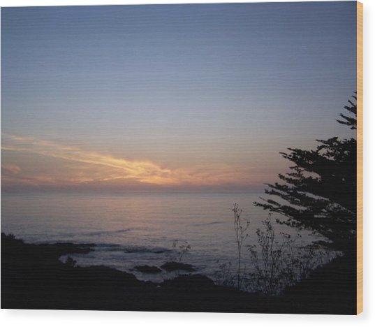 Twilight Coastline Wood Print