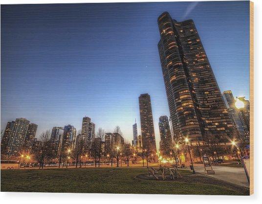 Twilight In Chicago Wood Print