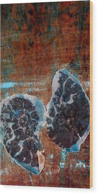 Twin Fossils Wood Print by Emma Manners