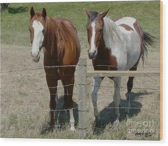 Two Friends Wood Print by Bobbylee Farrier