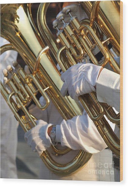 Two Tuba Players Wood Print