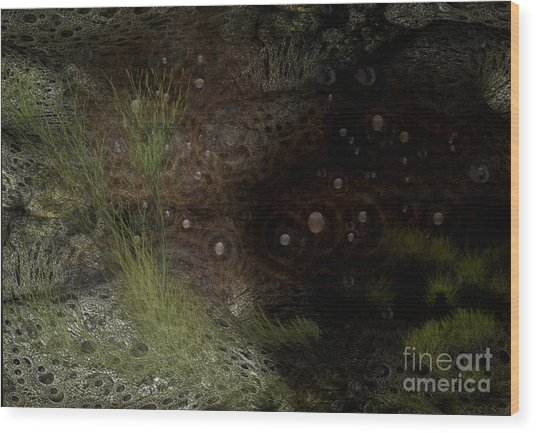 Under Sea Level Wood Print