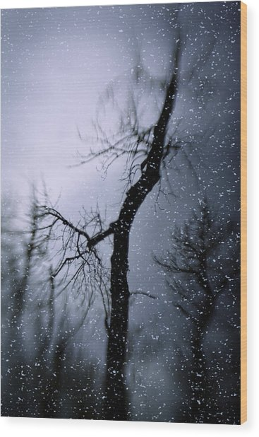 Under The Snow Wood Print