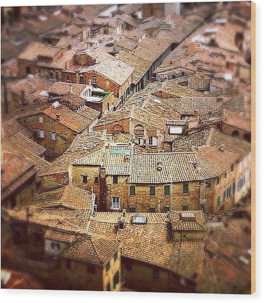 Under The Tuscan Sun.. #siena #rooftops Wood Print