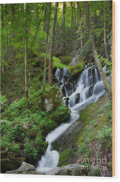 Unnamed Falls At Tremont Nc Wood Print by E Mac MacKay