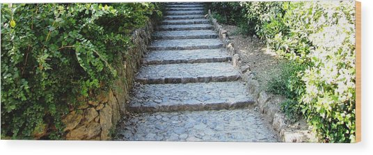 Up Hill Stairs In Parc Guell Barcelona Spain Wood Print by John Shiron
