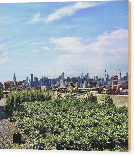 Urban Nature - New York City Wood Print