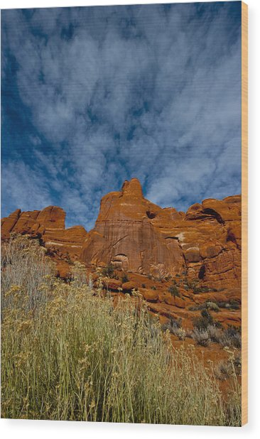 Utah Color  Wood Print