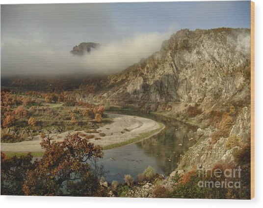 Valley Of The Vultures Wood Print