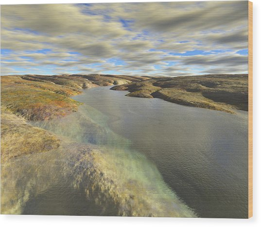 Valley Stream Wood Print