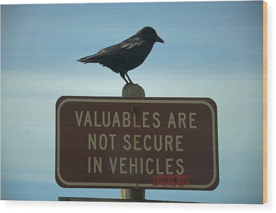 Valuables Are Not Secure Wood Print