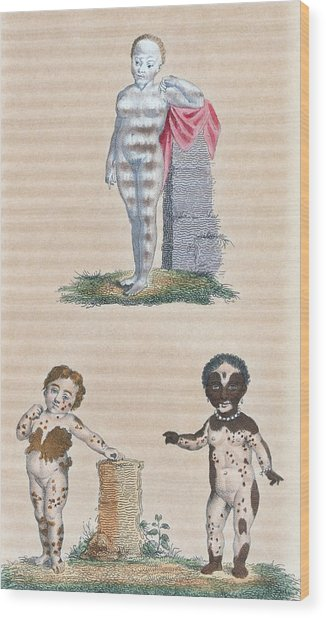 Varieties In The Human Species, Artwork Wood Print by General Research Division New York Public Library