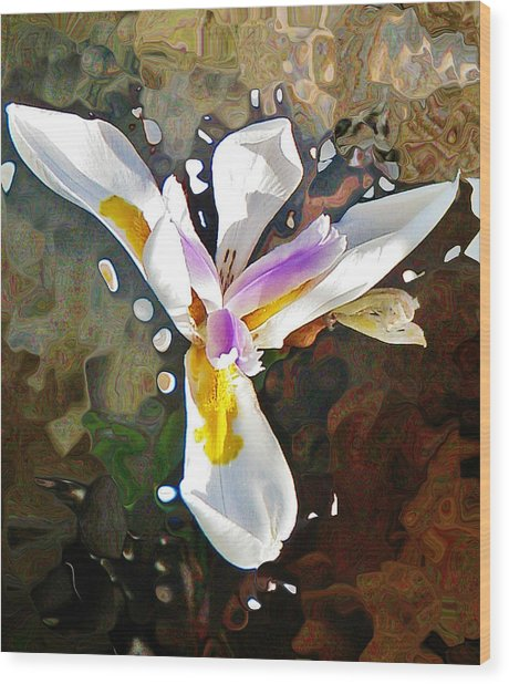 Venice Iris Wood Print