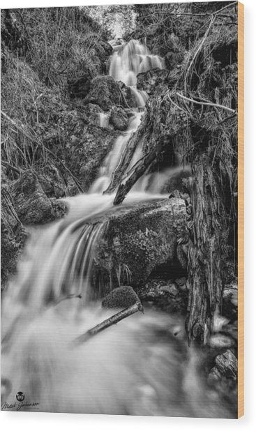 Vertical Falls Bw Wood Print by Mitch Johanson