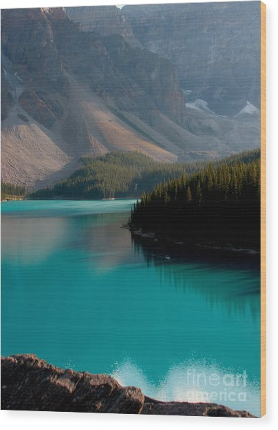 Vertical Wood Print