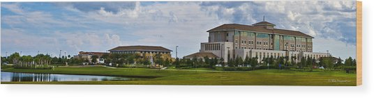 Viera Hospital Wood Print by Mike Fitzgerald