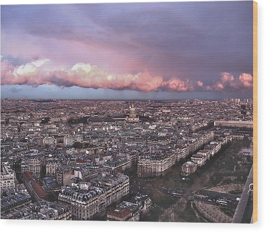 View From The Eiffel 2 Wood Print by David Ritsema