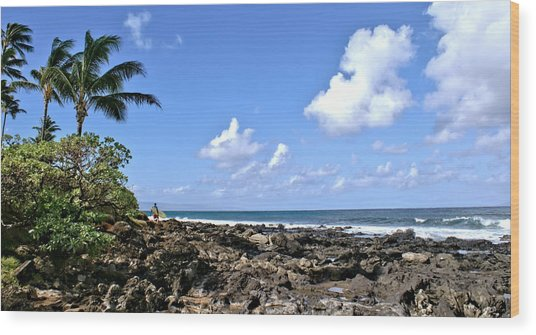 View From The Gazebo On Maui Wood Print