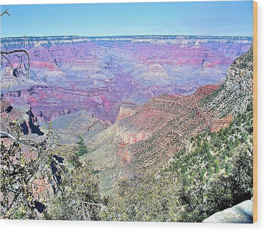 View From The South Rim Wood Print