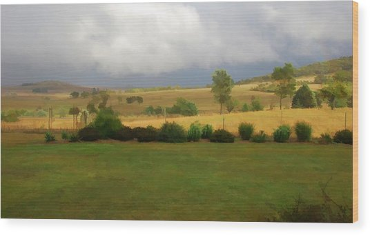 View From Verandah 1 Wood Print