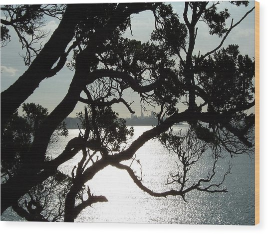 View Of Auckland Wood Print by Peter Mooyman