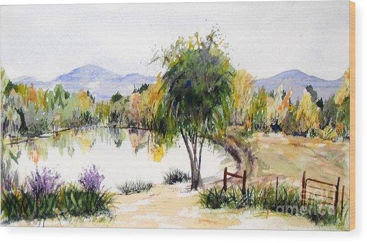 View Outside Reno Wood Print