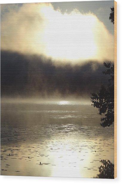 View1 Wood Print by Wim Haverkamp