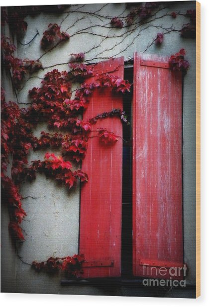 Vines On Red Shutters Wood Print