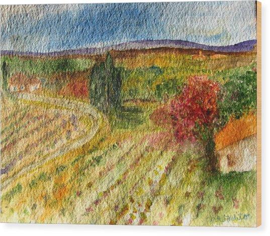 Vineyard In Provence Wood Print
