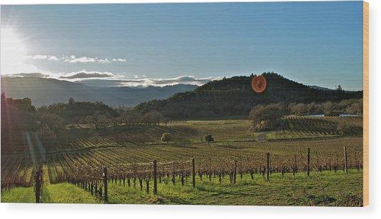 Vineyard Wood Print by Lori Leigh