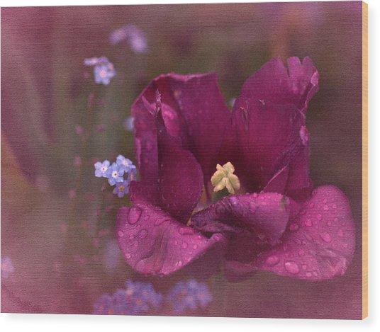 Vintage Tulip No. 2 Wood Print