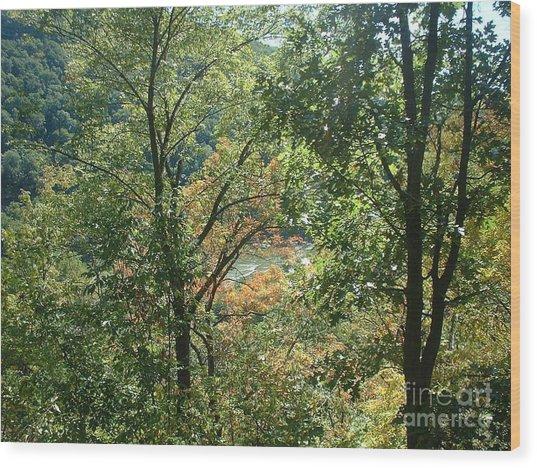 Virginia Walk In The Woods Wood Print