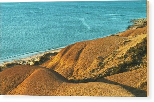 Voluptuous Shoreline Wood Print