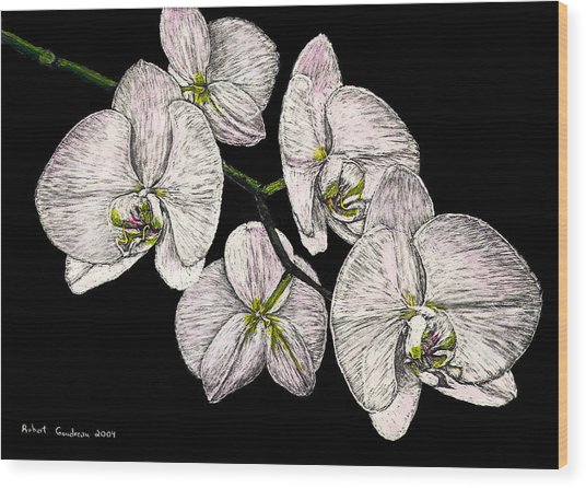 Wade's Orchids Wood Print by Robert Goudreau