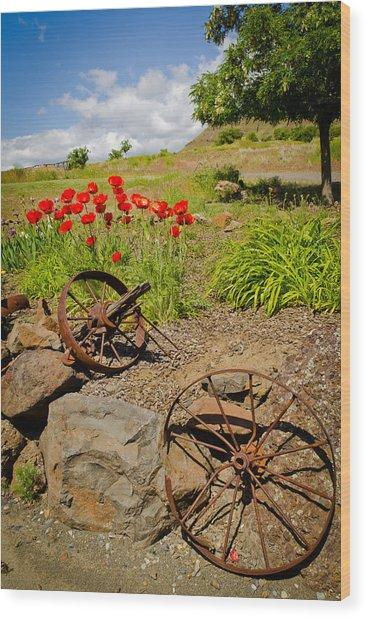 Wagon Wheels Wood Print by Jen TenBarge