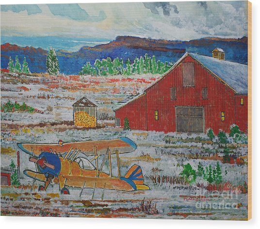 Waiting For Better Weather Wood Print by Donald McGibbon