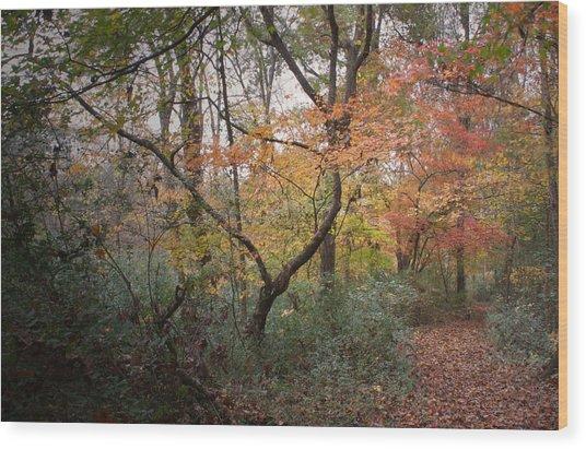 Walk Of Change Wood Print