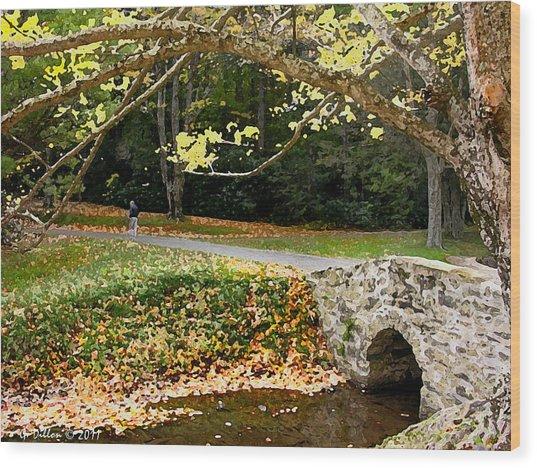 Walking In The Brisk Autumn Air Wood Print